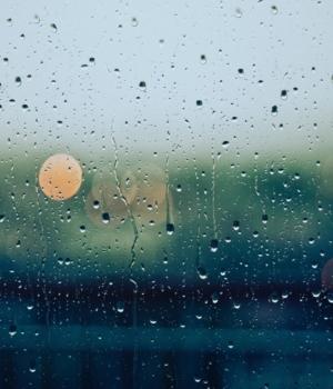 Marre de la pluie ? Pourtant, c'est une bonne chose...